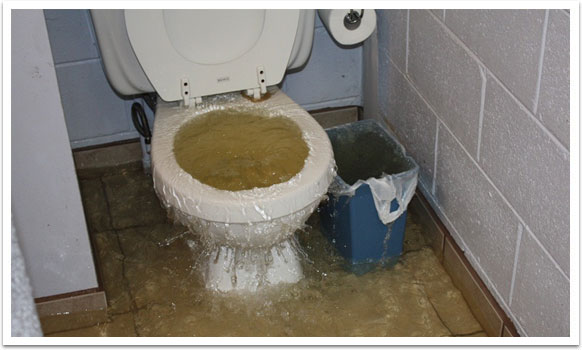 clogged-toilet